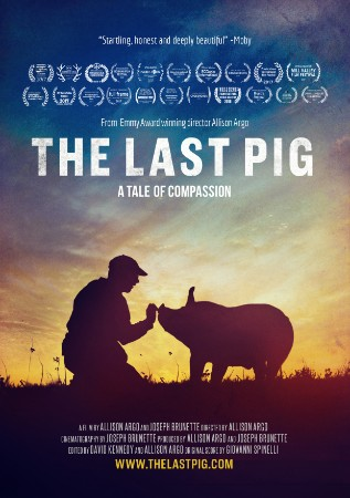 The Last Pig  cover image