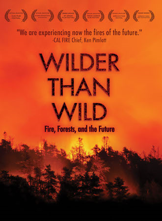 Wilder than Wild: Fire, Forests, and the Future cover photo